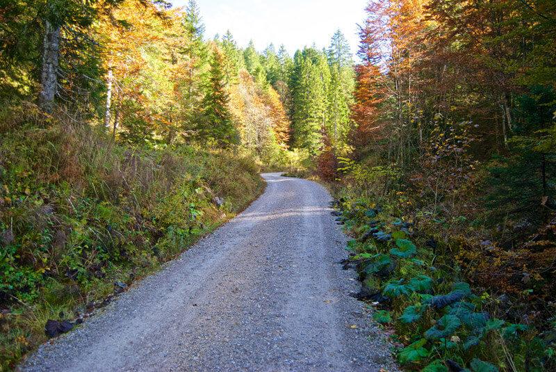 Weg durchs Hirschbachtal