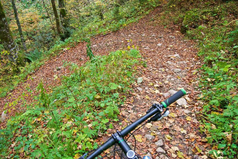 Kurve am Hirschberg-Trail