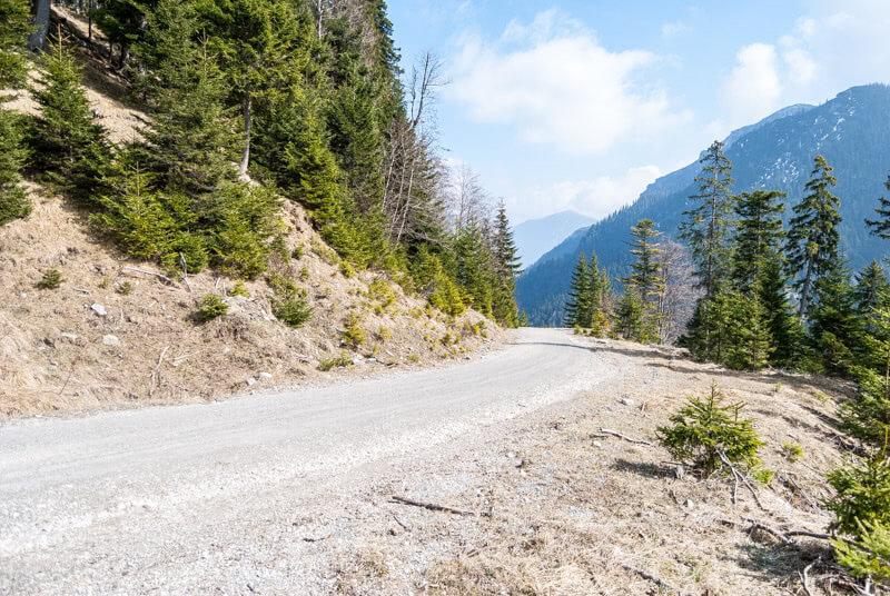 Forstweg mit tollem Berg-Panorama