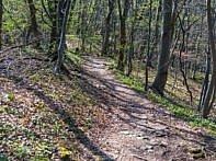Der erste Trail an der Albkante