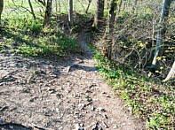 Grober Boden