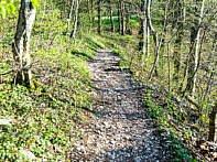 Auf zum letzten Trail
