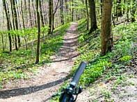 "Trail zum Wanderparkplatz ""Paradiesweg"""