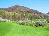 Wiesen und Hügel an der Alb