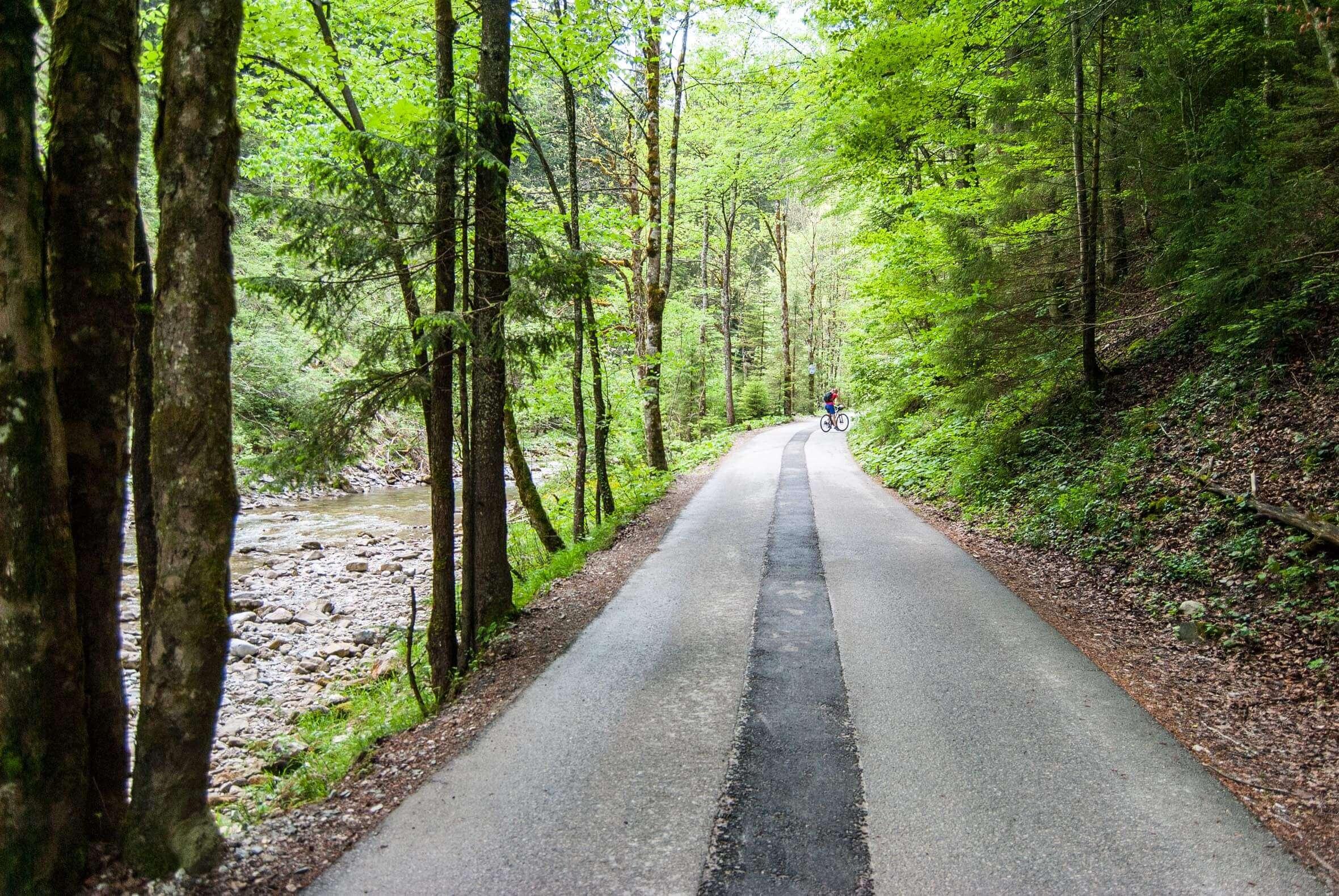 Auffahrt durch das Söllbachtal