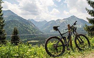 Der Wald gibt den Blick in Richtung Hirschberg frei