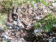 Grober-Schotter Navene Trail