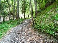 Der Steinbachtrail