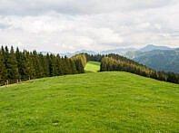 Wiesen, Wälder und Berge