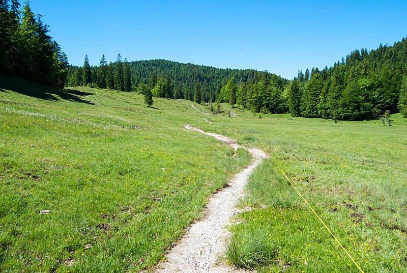 Einsamer Trail von der Luitpolder Alm