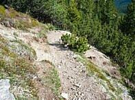 Spitzkehren Trail