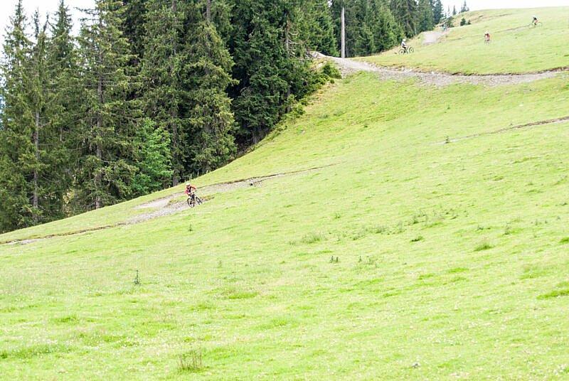 Trail-Abfahrt im Bikepark Leogang