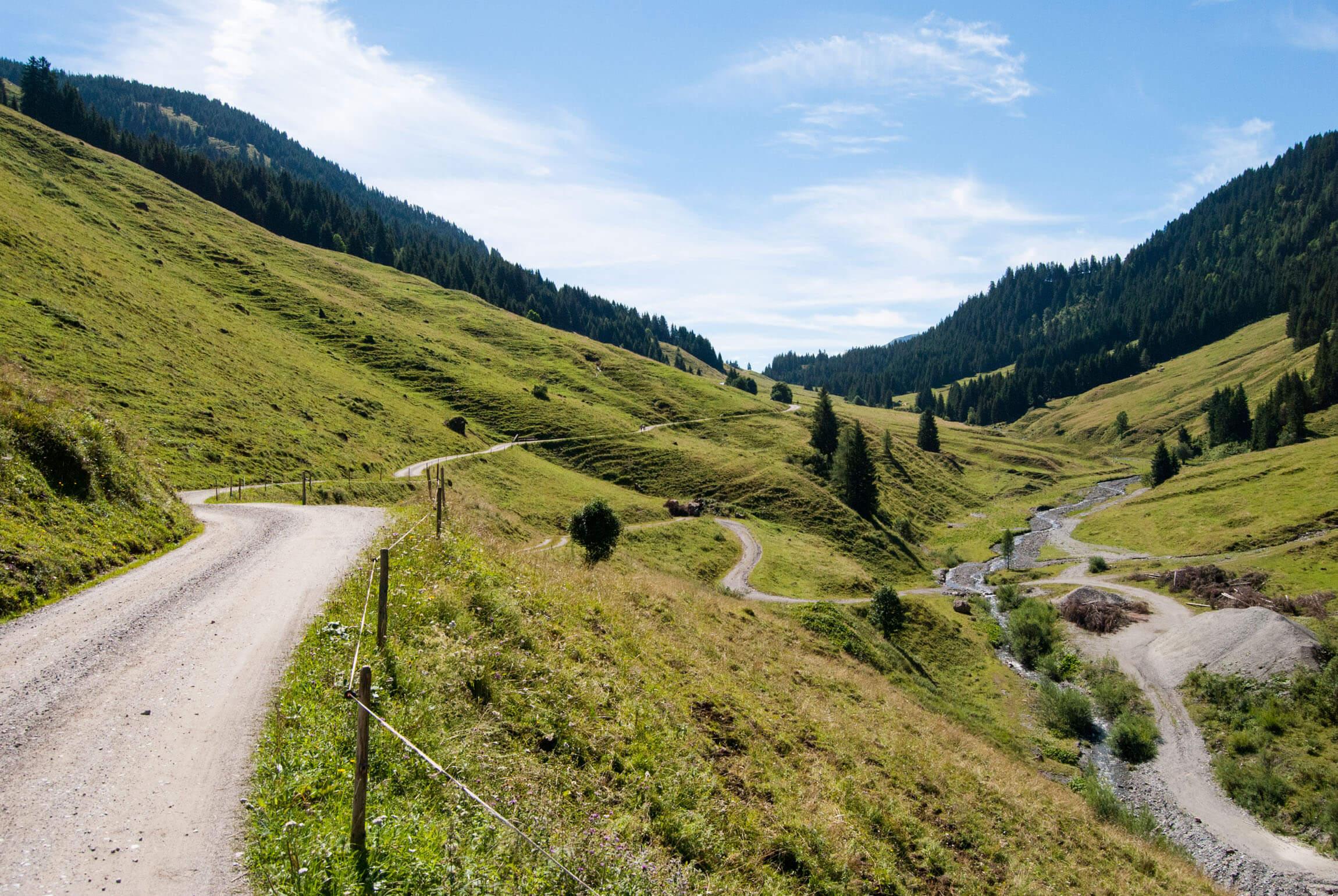 Entspannte Auffahrt auf Forststraßen
