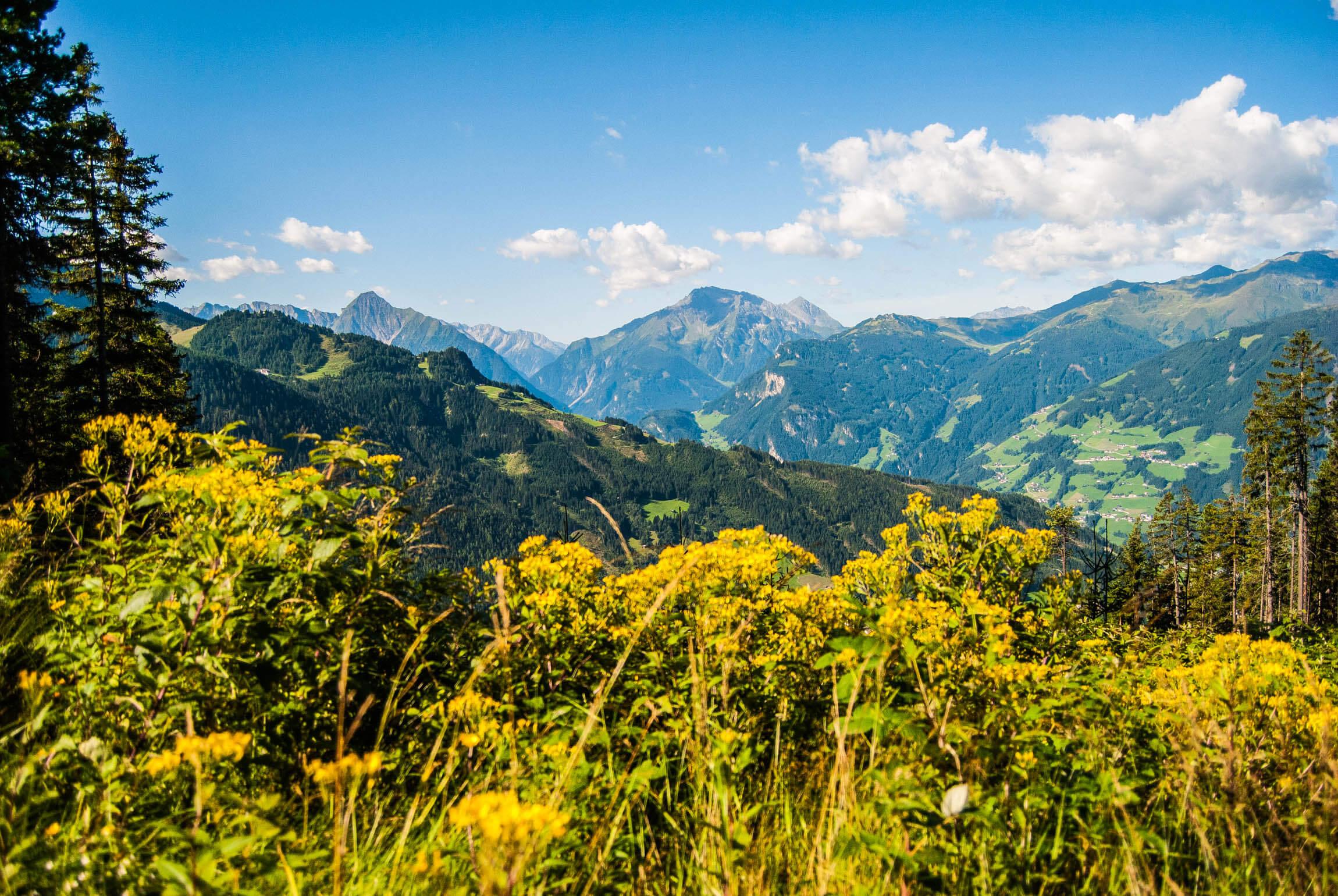Alpenblick kurz nach der Mittelstation