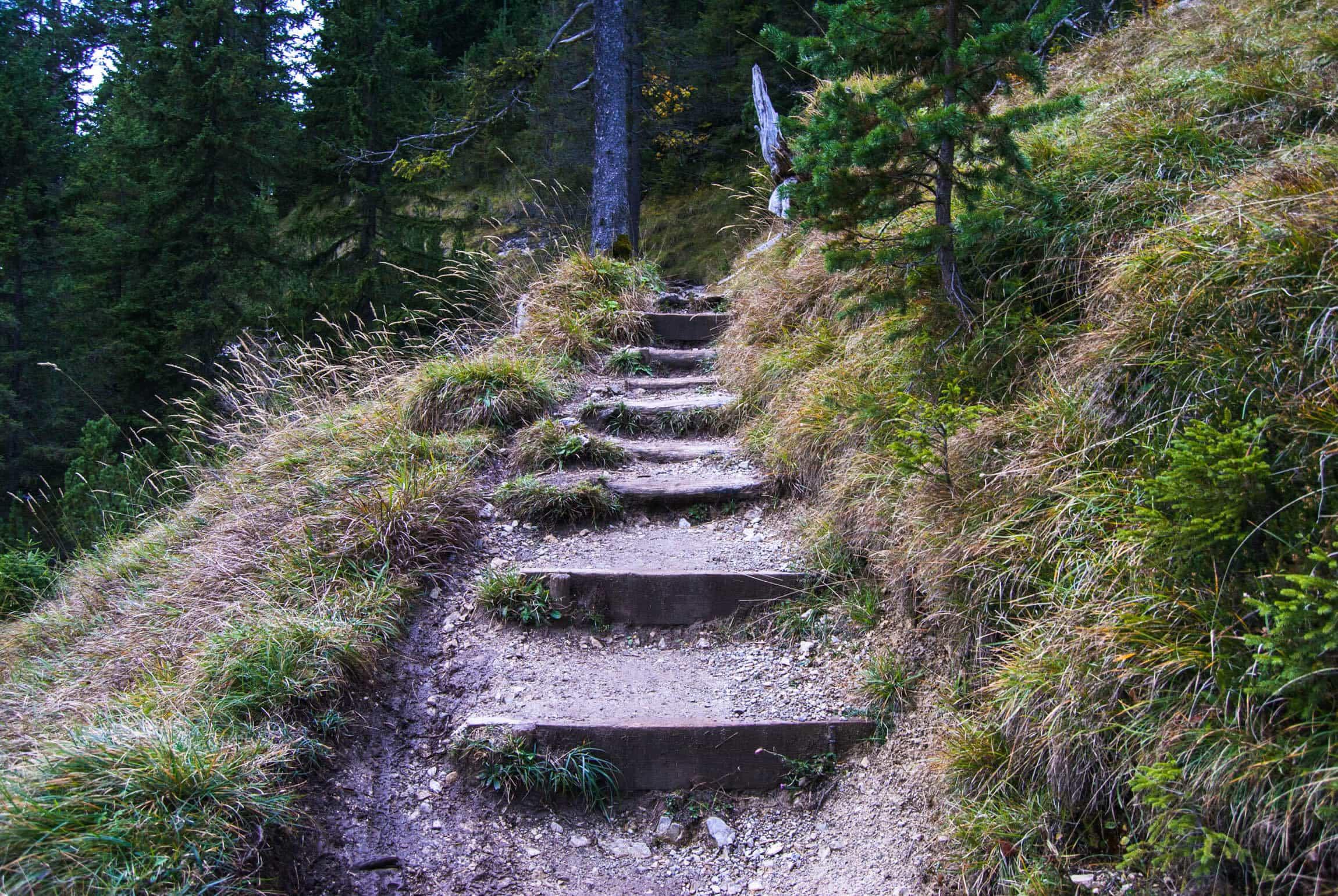 Stufen am Wank-Trail