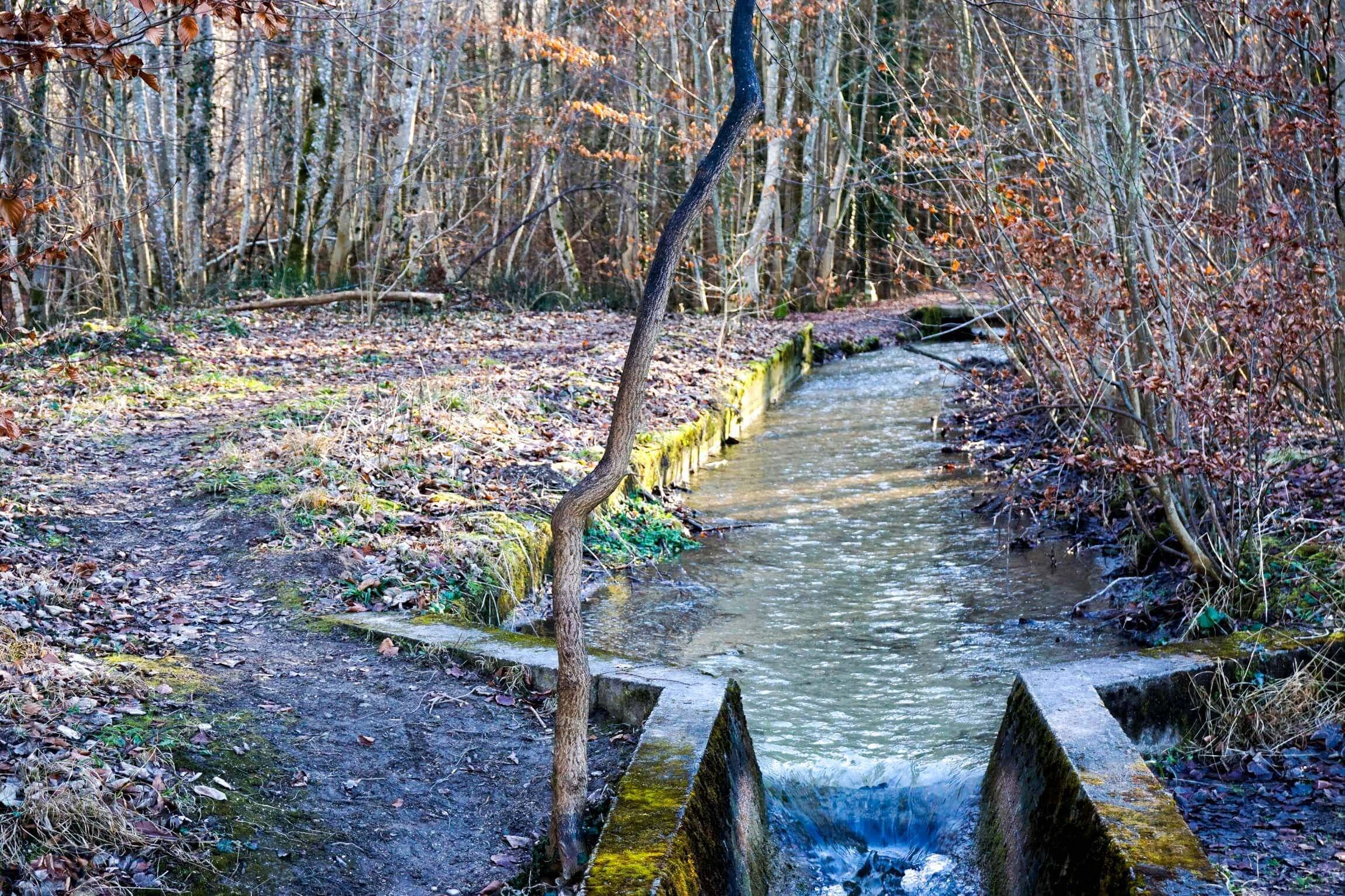 Andechs Trail am Bach