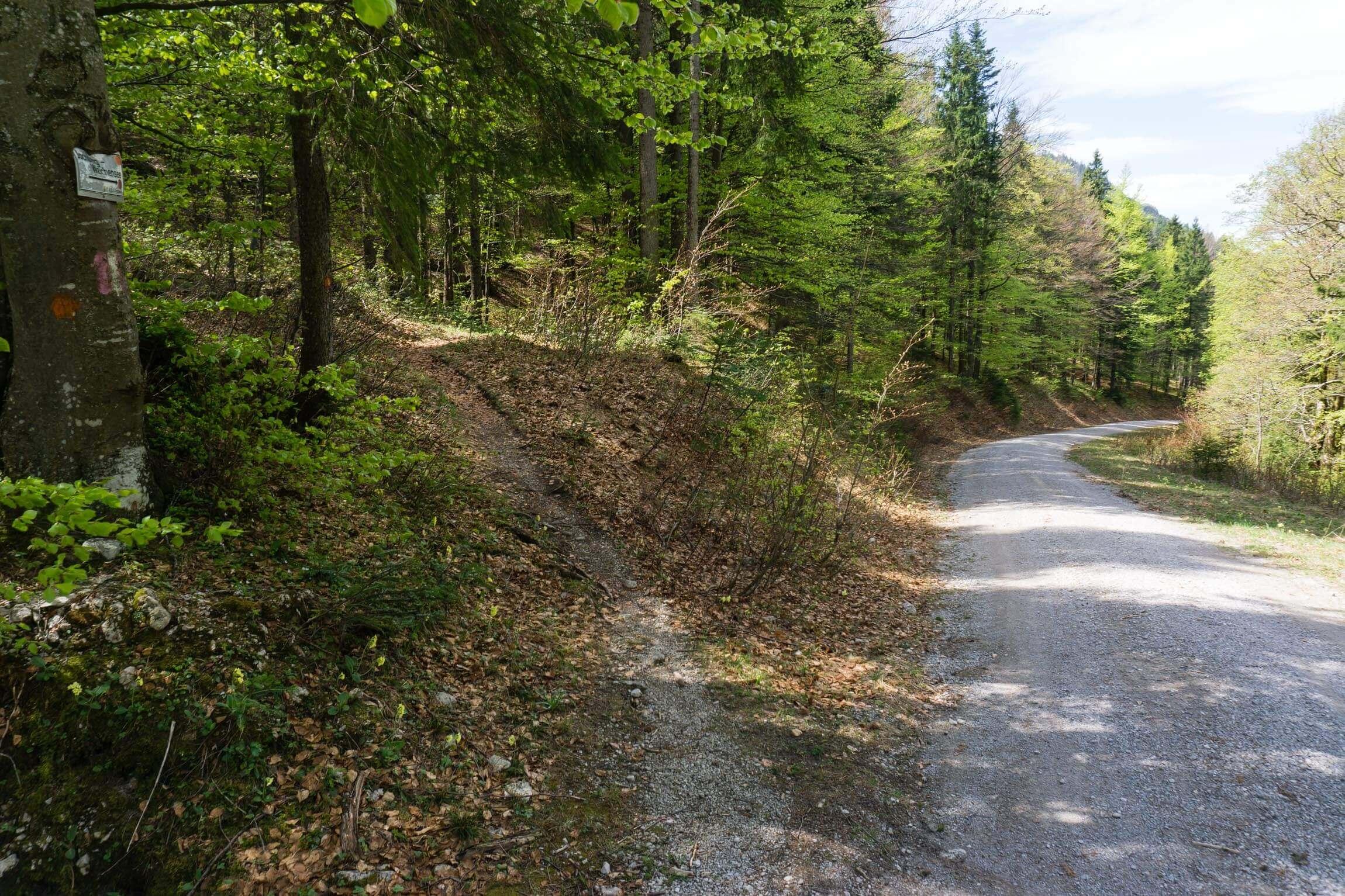 Erster Trail