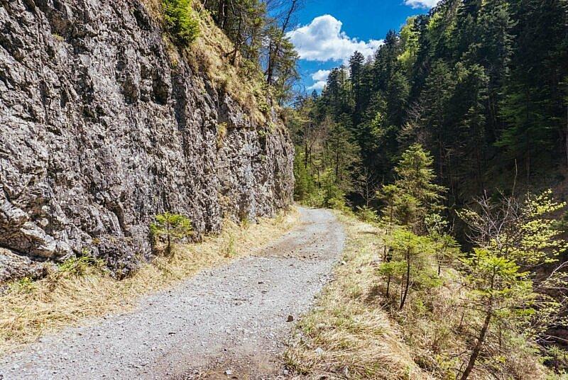 Mit dem Mountainbike durchs Eschenlainetal