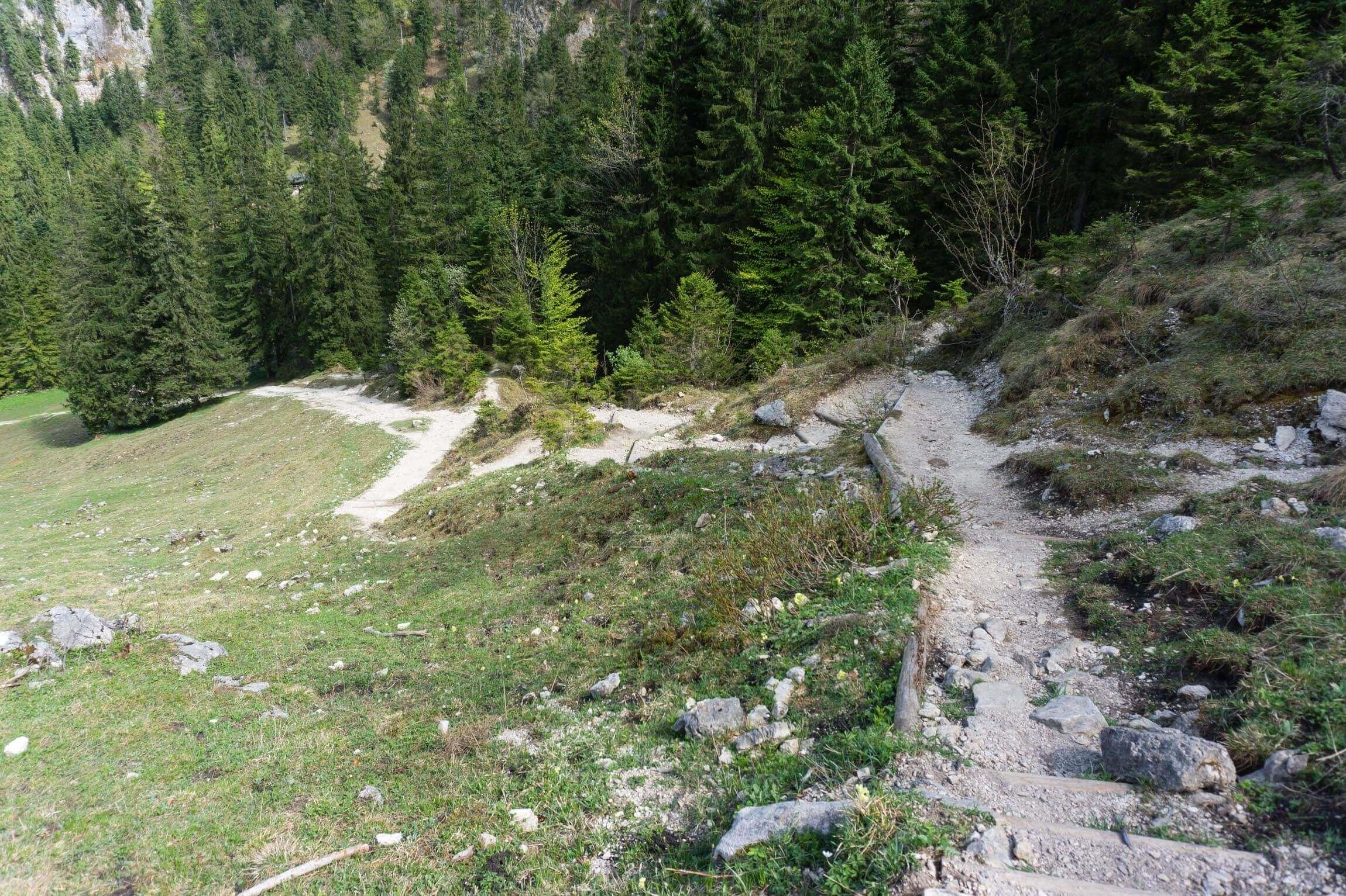 Trail zur Orterer Alm