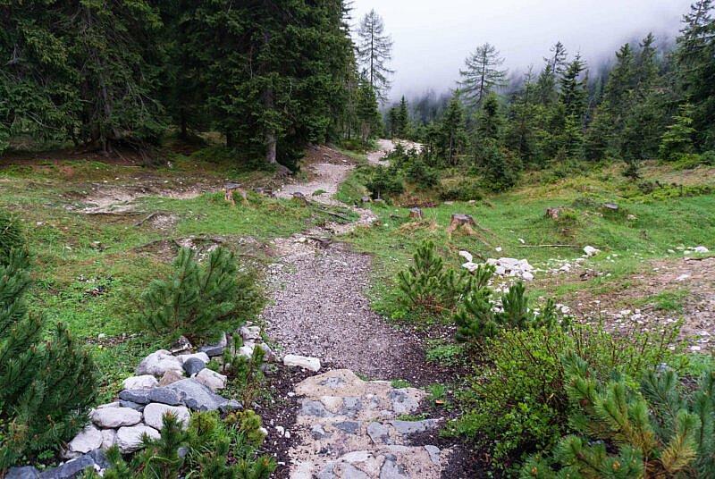 Trail nach der Neuen Alplhütte