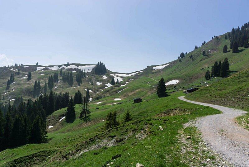 Über die Neuhütten Alm zum Hirschbachtal