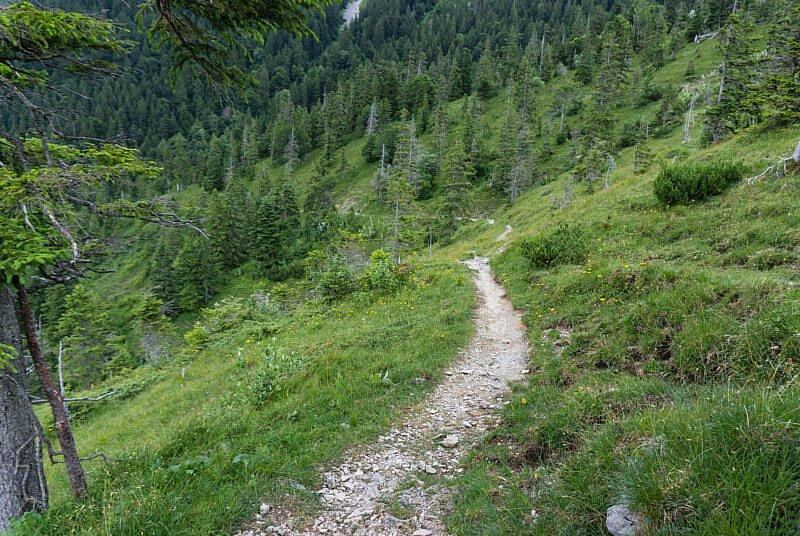 Benediktenwand Trail