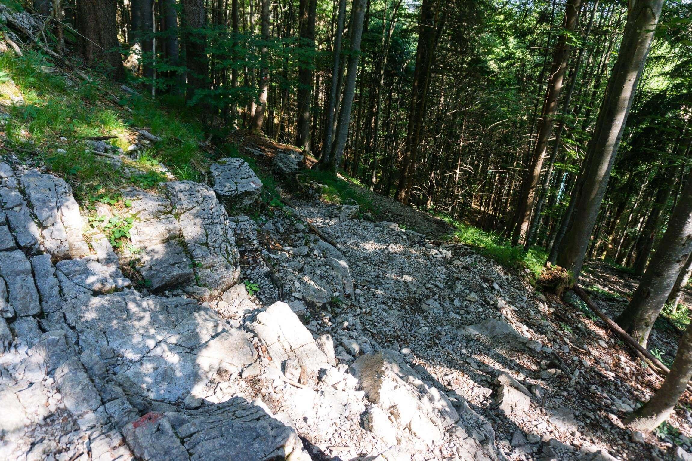 Sachenbach Trail