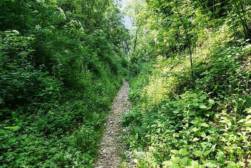 Trail in Bovec