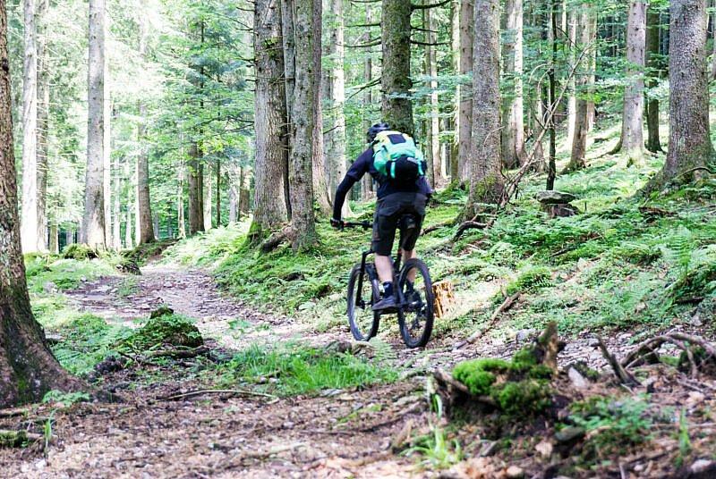 Trail zur Sattel-Alm