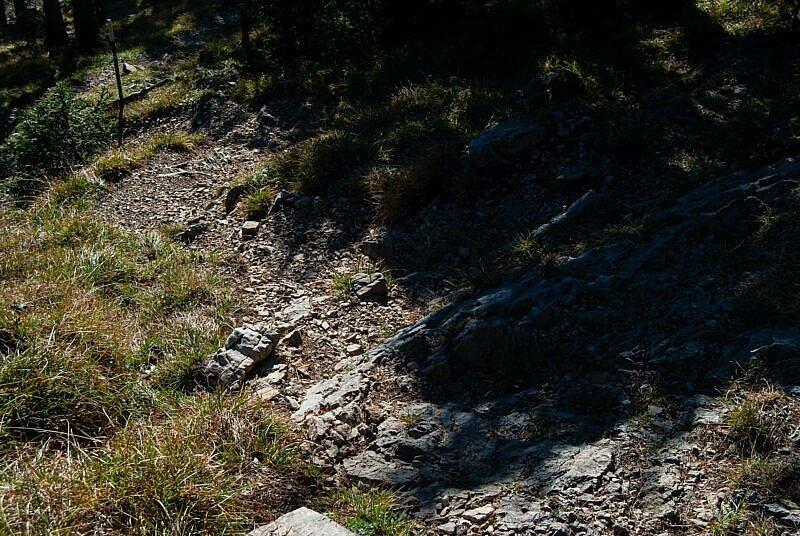 Trail Rauheck Schluesselstelle