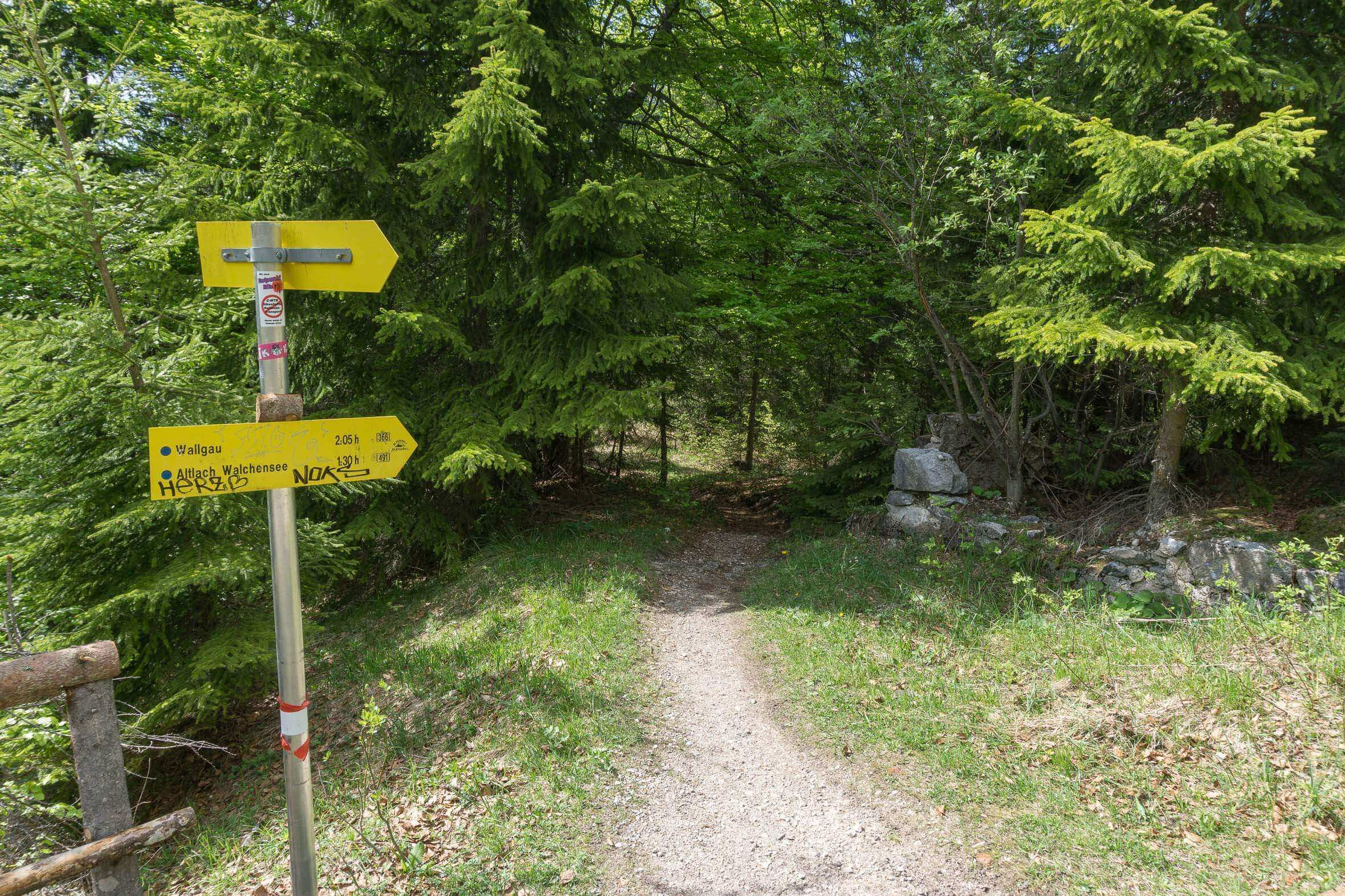 Einstieg in den MTB Trail