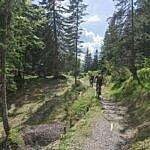 Altlacher Hochkopf Trail am Walchensee