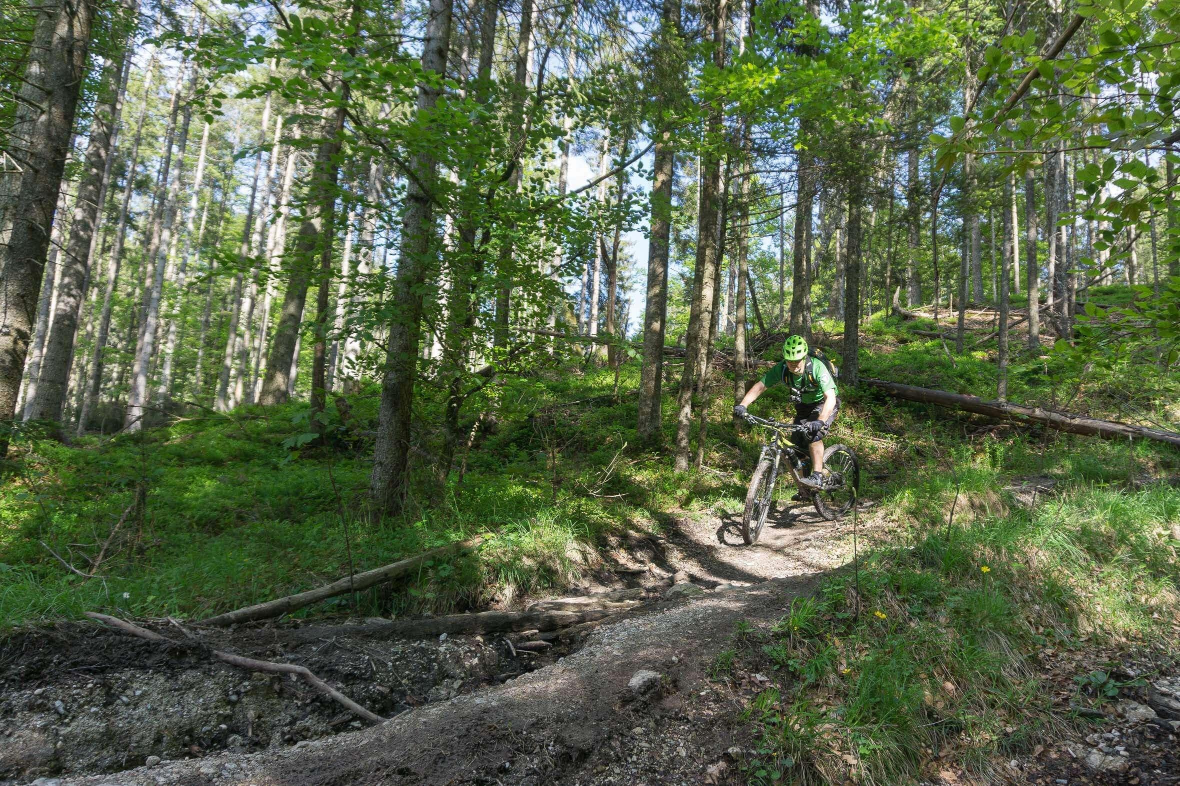 Mit dem Mountainbike am Altlacher Hochkopf Trail