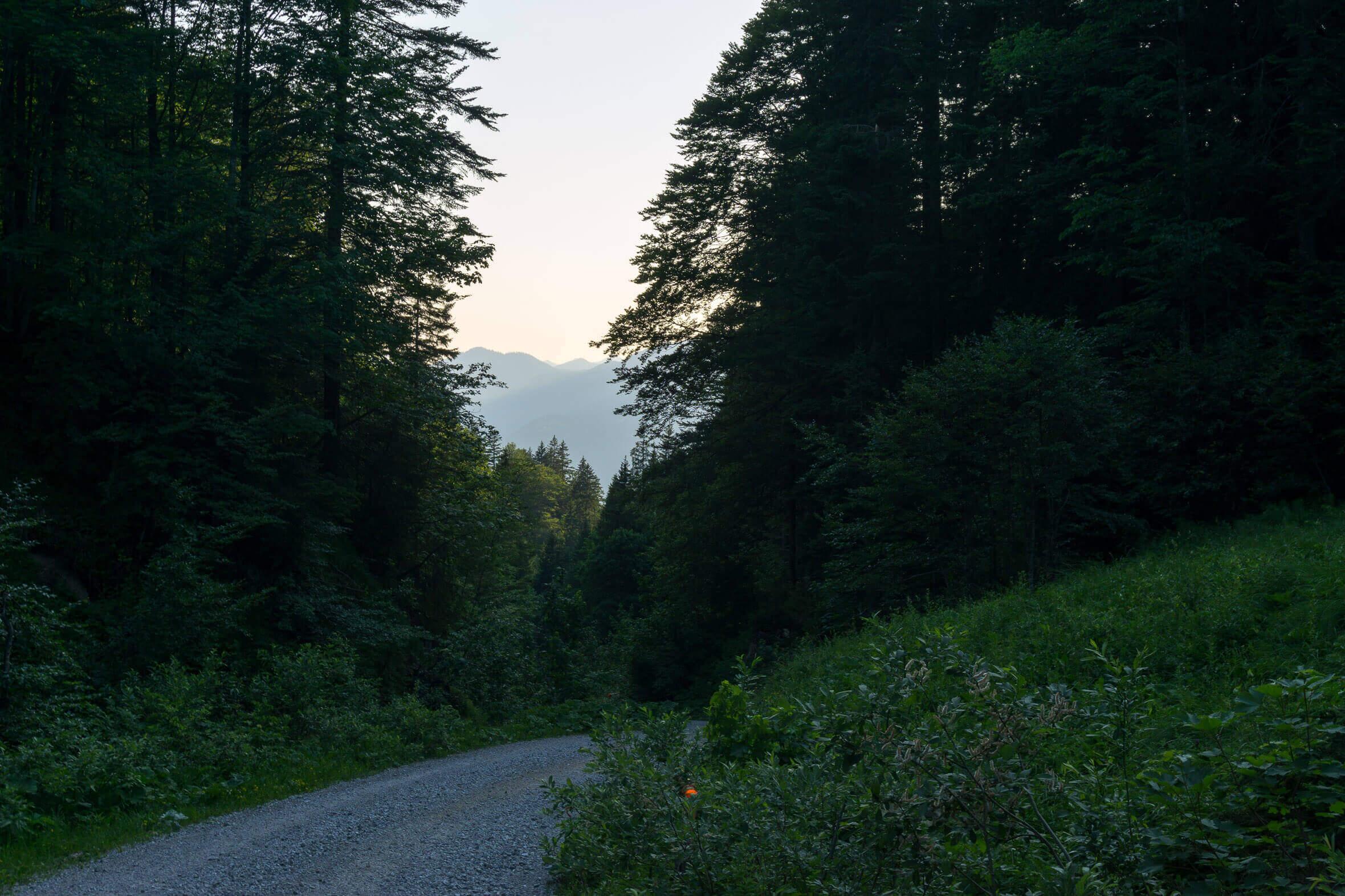 Auffahrt durch's Hirschbachtal