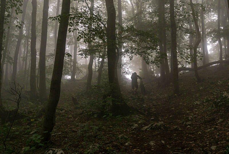 Durch den Nebel auf dem Nanos Plateau
