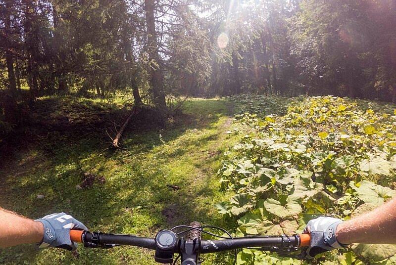 Trail vom Sudelfeld