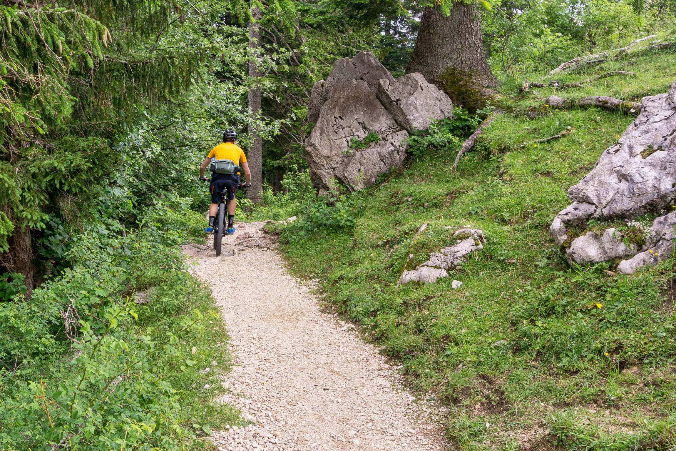 Trail von der Bründling-Alm.