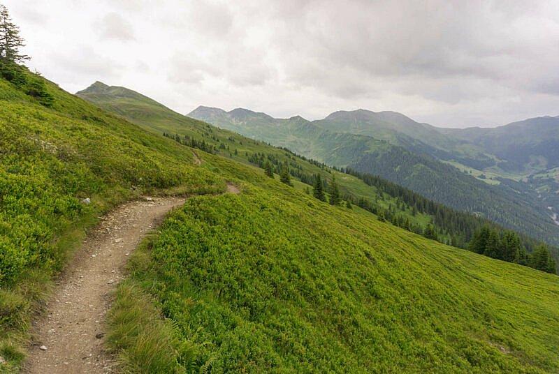 Aussicht vom Hacklberg Trail