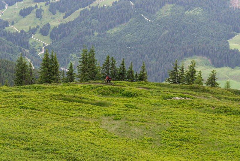 Bergstadl Trail