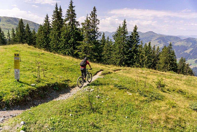 Fleckalm Trail