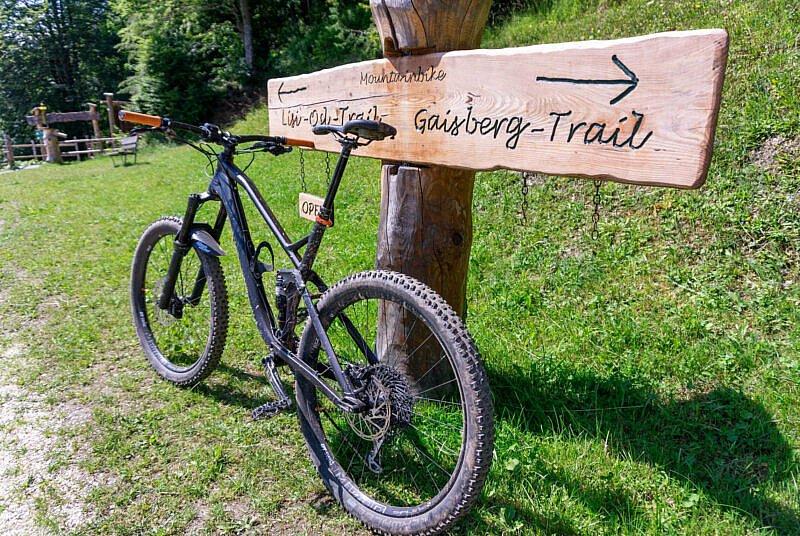 Gaisberg Trails
