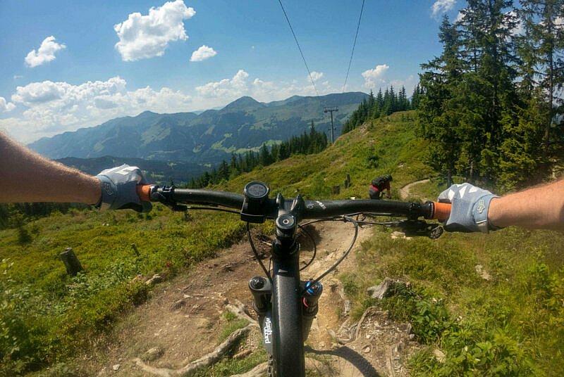 Wurzeln Fleckalm Trail