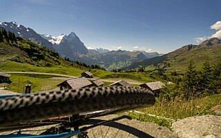 Große Scheidegg MTB