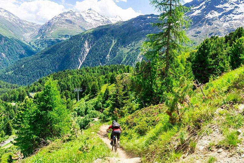 Nene Trail