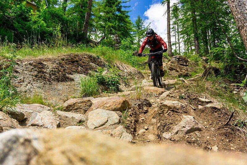 Steinfeld auf dem Schteckler Trail